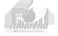 Amarena Heladería Artesanal